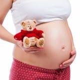 Zwangere moeder die haar buik tonen en teddy houden stock afbeeldingen