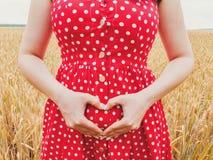 Zwangere onherkenbare vrouw in stip rode kleding die zich op tarwegebied bevinden en hartsymbool op haar buik tonen royalty-vrije stock fotografie