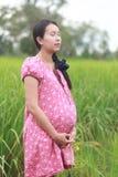 Zwangere vrouw. Royalty-vrije Stock Foto's