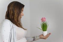 Zwangere vrouw die buik in lichte kleuren tonen die een installatieverstand houden Royalty-vrije Stock Afbeelding