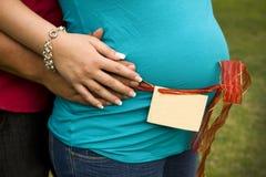 Zwangere vrouw die door haar echtgenoot wordt gehouden Stock Foto