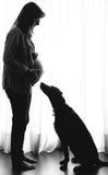 Zwangere vrouw en hond stock afbeelding