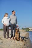 Zwangere vrouw en man met hond royalty-vrije stock afbeelding