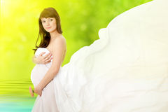 Zwangere vrouw en roze madeliefjebloem stock afbeeldingen