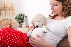 Zwangere vrouw met haar hond thuis Stock Afbeeldingen