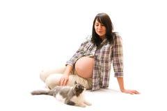 Zwangere vrouw met kat royalty-vrije stock afbeelding