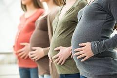 Zwangere vrouwen royalty-vrije stock afbeelding