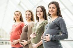 Zwangere vrouwen Stock Afbeeldingen