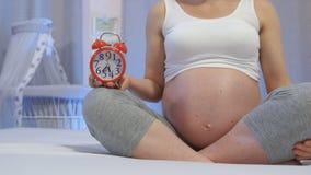 Zwangerschap maand na maand stock videobeelden
