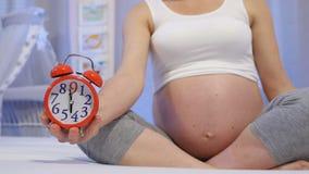 Zwangerschap maand na maand stock footage