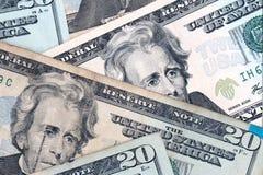 Zwanzig Dollarscheine Stockbilder