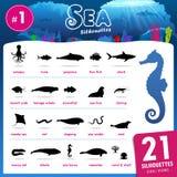 Zwanzig ein Seetier silhouettiert Teil 1 Stockfotografie