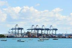 Zware kranen bij de haven van Auckland Stock Foto's