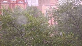Zware regen en stormachtige wind buigende bomen in woonwijk4k video stock video