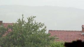 Zware Regen het Vallen stock video