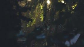 Zware regen in stadspark in de avond stock video