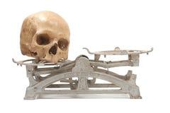Zware schedel Stock Afbeelding