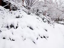 Zware Sneeuw begin Maart Royalty-vrije Stock Afbeeldingen