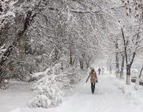 Zware sneeuw in Kiev, de Oekraïne, 5 Februari, 2015 Stock Fotografie