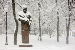 Zware sneeuw in Kiev, de Oekraïne, 5 Februari, 2015 Stock Afbeeldingen