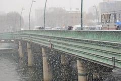 Zware sneeuw in Parijs Royalty-vrije Stock Foto