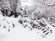 Zware Sneeuw in Washington DC Royalty-vrije Stock Foto's