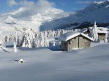 Zware sneeuwval Royalty-vrije Stock Foto