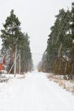 Zware sneeuwval in het dorp van Vyritsa Royalty-vrije Stock Fotografie