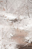 Zware sneeuwval over een kreek Royalty-vrije Stock Foto's