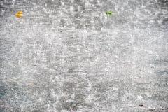 Zware tropische regendalingen Stock Afbeelding