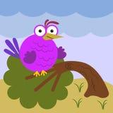 Zware vogel Stock Foto