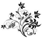 Zwart bloempatroon Stock Afbeeldingen