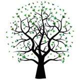 Zwart boomsilhouet Stock Fotografie