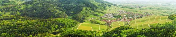 Zwart bos en typisch dorp duitsland Royalty-vrije Stock Foto's