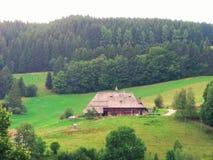 Zwart bos typisch huis sommer 2017 stock fotografie