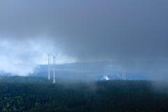 Zwart Boslandschap in mist royalty-vrije stock foto's