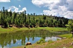 Zwart Canionmeer, de Provincie van Navajo, Arizona, Verenigde Staten, het Nationale Bos van Apache Sitegreaves Royalty-vrije Stock Afbeelding