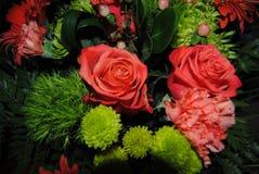 Zwart, donkergroen, lichtgroen, textuur, roze, rozen, bloemen, groen, bloesems, aromatisch bloeien, vers, prettig, D royalty-vrije stock fotografie