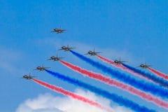 Zwart Eagles Royalty-vrije Stock Foto's