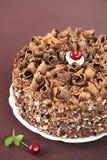 Zwart Forest Cake Royalty-vrije Stock Afbeeldingen