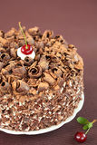 Zwart Forest Cake Stock Foto's