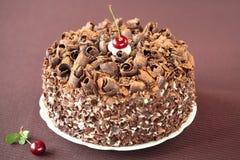 Zwart Forest Cake Stock Fotografie