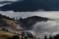 Zwart Forest Mountains Landscapennature Trees Fog Duitsland Schwarzwald Schauinsland Stock Fotografie