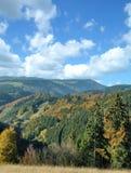 Zwart Forest Tourist Road, Duitsland stock foto