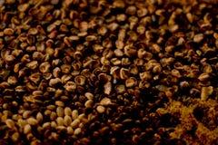 Zwart graan die in dag van de doden aanbieden stock fotografie