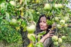 Zwart-haired meisje in de appelboomgaard tussen de takken van t stock fotografie
