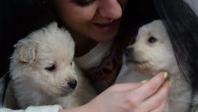 Zwart-haired meisje die twee puppy en het glimlachen knuffelen stock footage