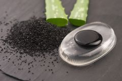 Zwart houtskoolmasker met aloë Vera stock foto