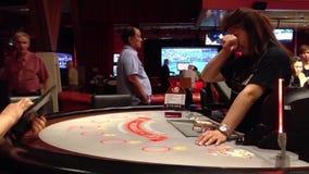 Zwart Jack Casino stock video