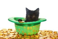 Zwart katje in kabouterhoed op gouden muntstukken Stock Foto's